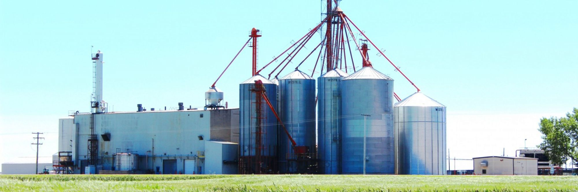 Canada's First Integrated Feedlot / Fuel Ethanol Facility